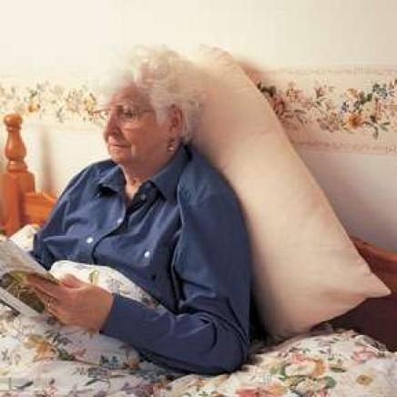 V Shaped Back Support Pillow Slip