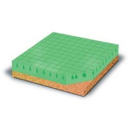 Eco Foam Plus Cushion