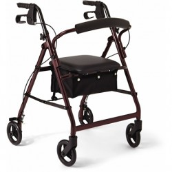Burgundy Basic Foldable Walker Rollator